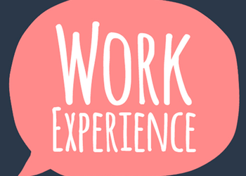 Work Experience 2018